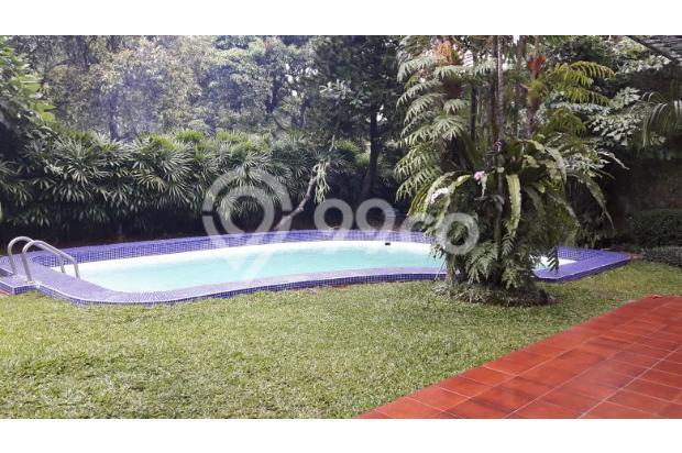 Rumah Sewa di Kemang, Jakarta Selatan ~ Swimming Pool ~ Halaman Luas 17793269