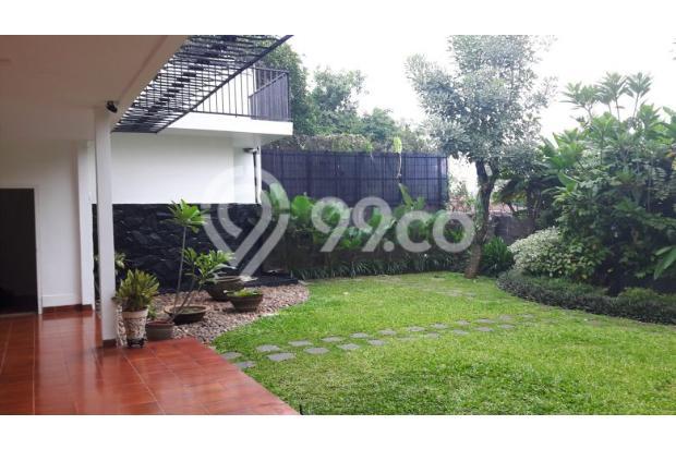 Rumah Sewa di Kemang, Jakarta Selatan ~ Swimming Pool ~ Halaman Luas 17793270