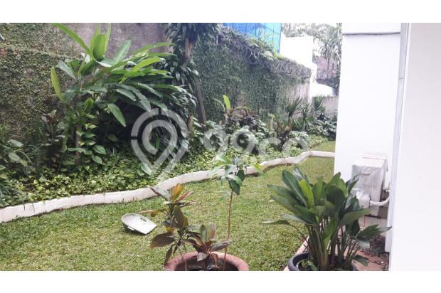 Rumah Sewa di Kemang, Jakarta Selatan ~ Swimming Pool ~ Halaman Luas 17793271