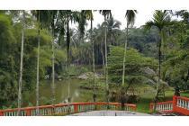 Dijual Cepat Rumah, Tanah 1,5 hektar, Kolam Ikan & Kandang Ayam