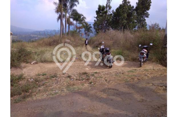 Tanah Murah Cuma 150.000/mtr Plus Villa Cocok u Rmh Subsidi di Bdg Selatan 13190110