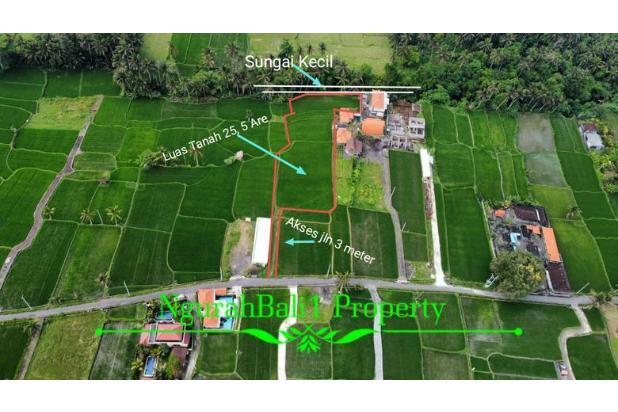 Rp726mily Tanah Dijual