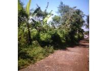 tanah 500m2 di jalan benteng lido