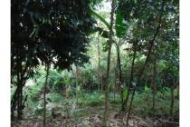 Dijual Tanah Kosong Strategis di Cigadung Raya Barat Bandung
