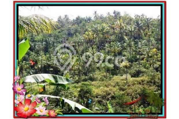 Cantik Alami, 1.500 m2  Tebing dan sungai besar di Ubud TJUB503  4292458
