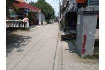 Tanah-Sidoarjo-2