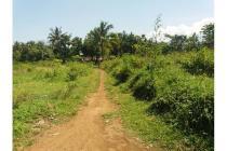 Tanah Strategis di Jl. Banteran, Purwokerto