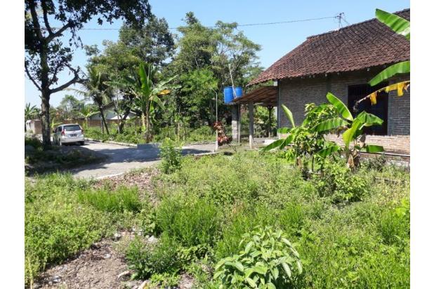 Legalitas: SHMP, Tanah di Selomartani, Dusun Pete 18274813