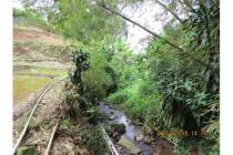 Tanah-Bogor-7