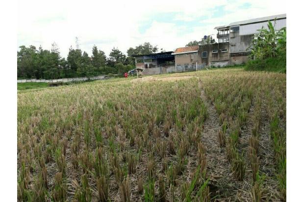 Rp17,8mily/hari Tanah Disewa