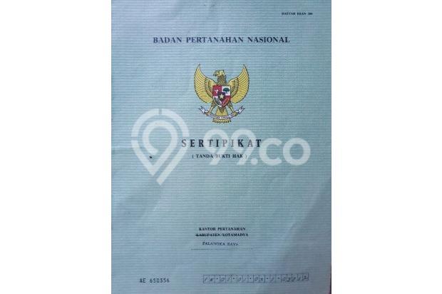 sertifikat 21865690