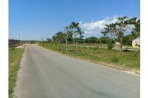DijuaL Murah tanah jalur puspem-Sumba Barat Daya.Nusa Tenggara Timur.