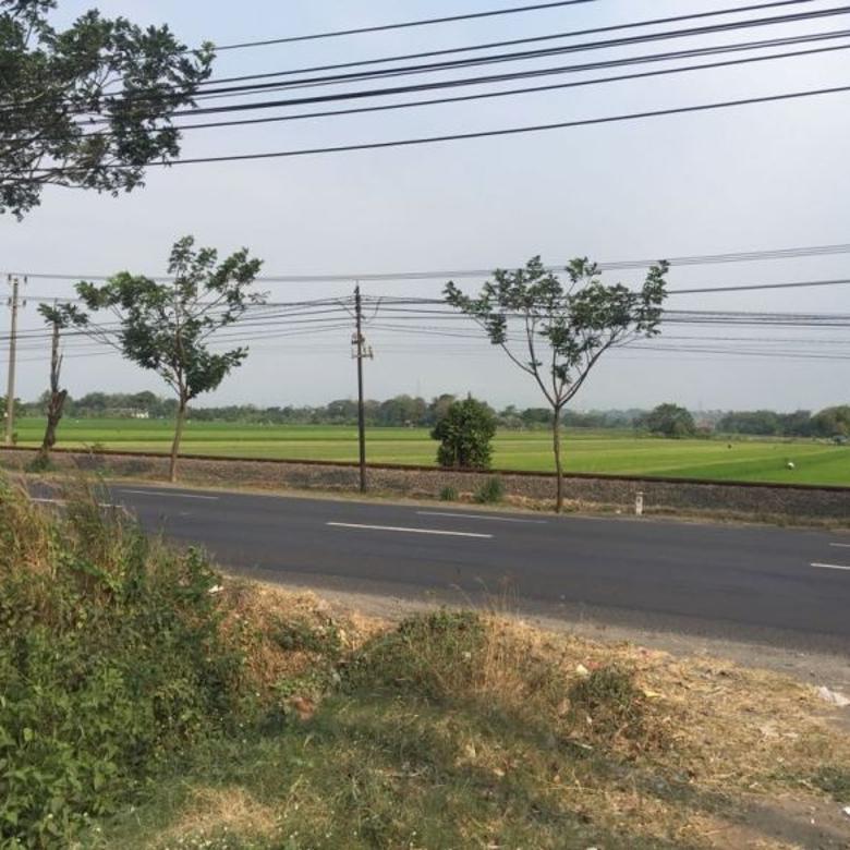 Tnh Ry beji pasuruan LT 9000m2  nol jln propinsi