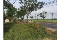 Tanah-Pasuruan-2