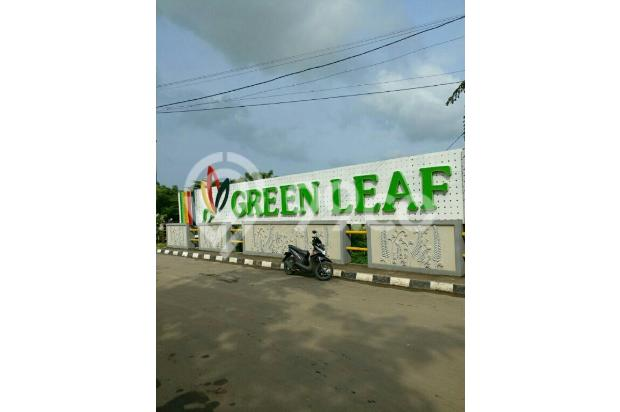 over kredit cluster green leaf 16170190