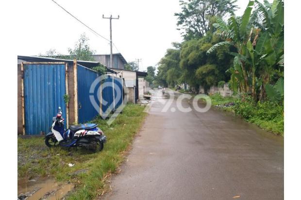 Dijual Tanah Cisauk Luas 1.500 m2 Cocok untuk kontrakan maupun tempat usaha 17307534