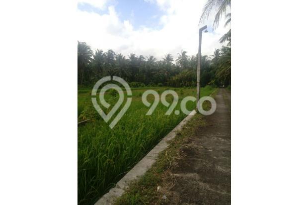 Investasi Tanah Strategis Dekat Calon Bandara Kulon Progo di Tawangsari, KP 15830255