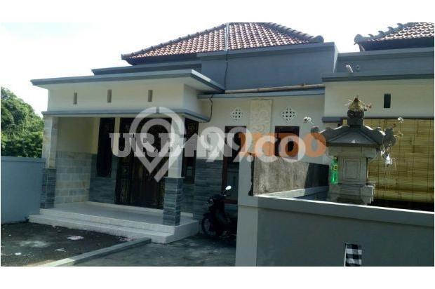 Dijual Rumah Baru Murah DP bs di angsur Mengwi Badung 5183832