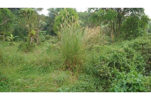 Segera Miliki Rumah di Citayam, Ga Ngontrak Lagi 17825080