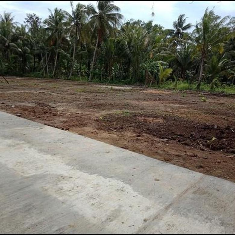 Tanah Sleman, Dekat Pasar Gentan, Legatitas SHM
