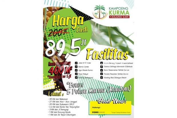 Investasi Kavling Kurma Syariah Murah Gratis 5 Pohon Kurma 12748681