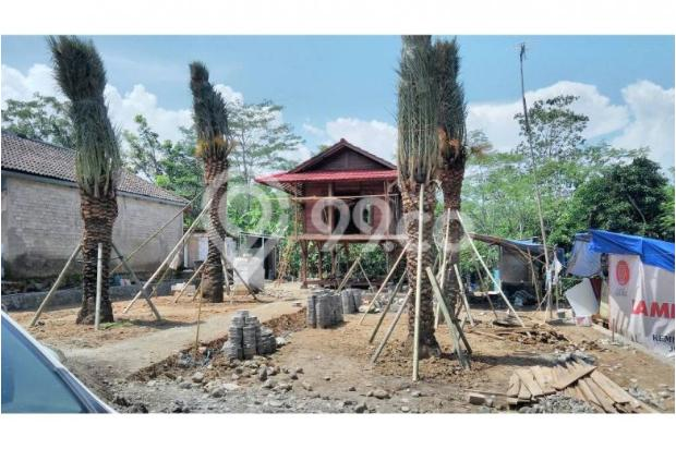 Investasi Kavling Kurma Syariah Murah Gratis 5 Pohon Kurma 12748688