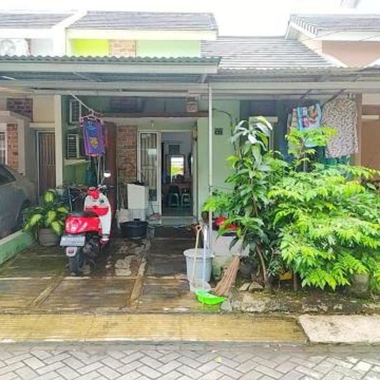 Rumah minimalis di Serpong