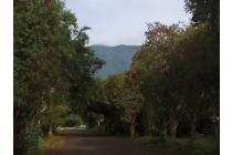 Gathering Tanah Kavling Green Montana Village Puncak-Dapatkan Harga Perdana