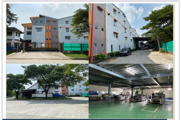Rp61mily Pabrik Dijual
