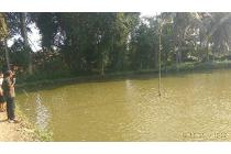 Dijual kolam ikan produktif
