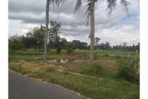Tanah Dijual Jogja Tajem,Tanah di Tajem Maguwoharjo Srategis
