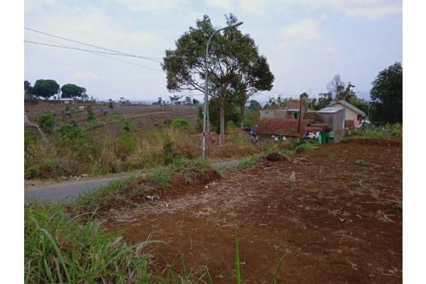 Rp539jt Tanah Dijual