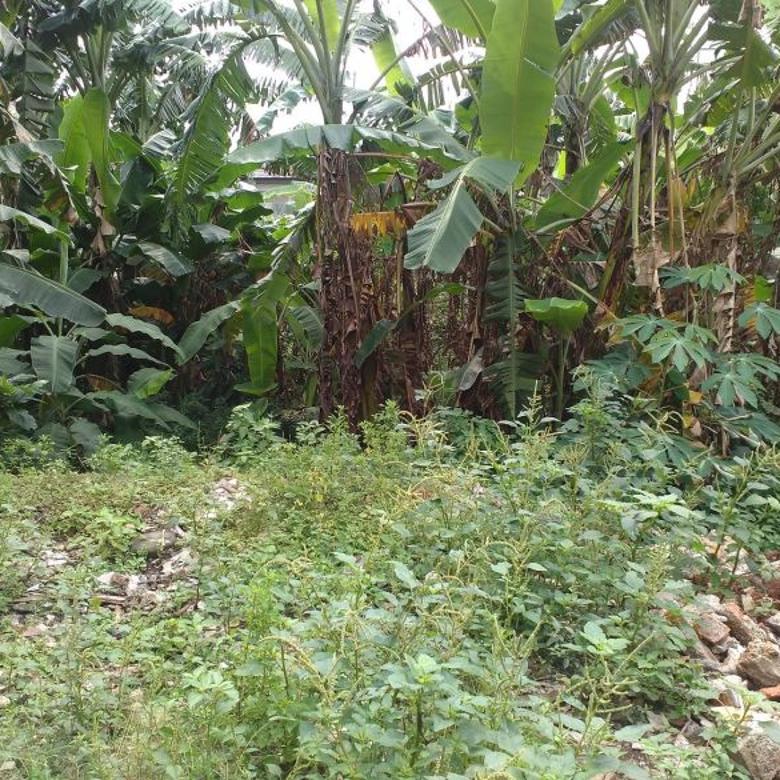 Dijual cepat tanah daerah Jati Padang Jaksel