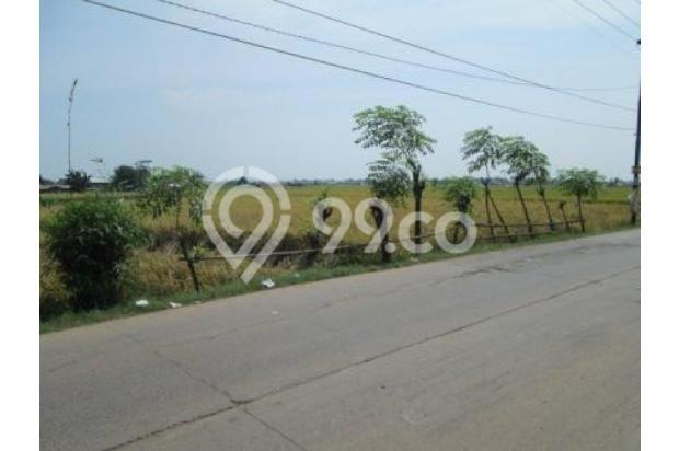 Tanah sawah sangat strategis,dijual cepat bekasi 1219776