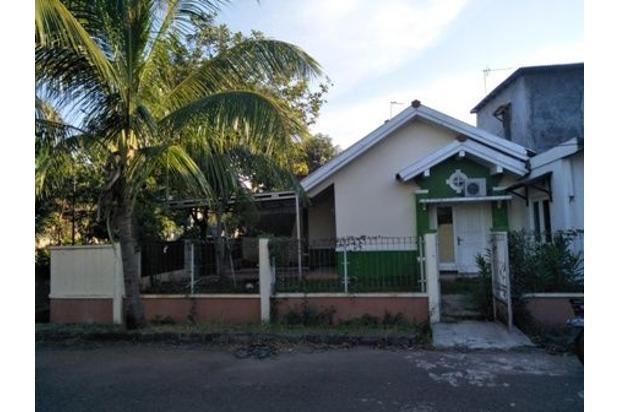 Rumah siap huni disewakan duta bumi3 15516272