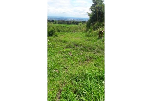 Rp542mily Tanah Dijual