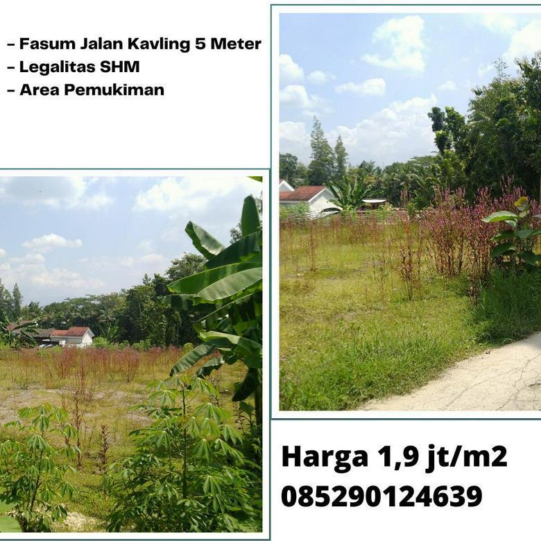 Tanah Murah Area Pemukiman Sedayu - Jogja