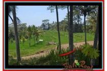 Tanah Prospektif sangat Cantik 10.000 m2 di Ubud Pejeng E456