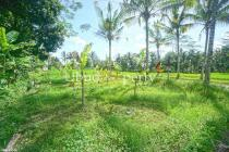 TS.312- 12 km north-east of Ubud. Country feel / Great climate. A block of
