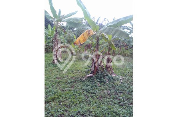 DI jual sebidang tanah di sentul city bojong koneng 14737783