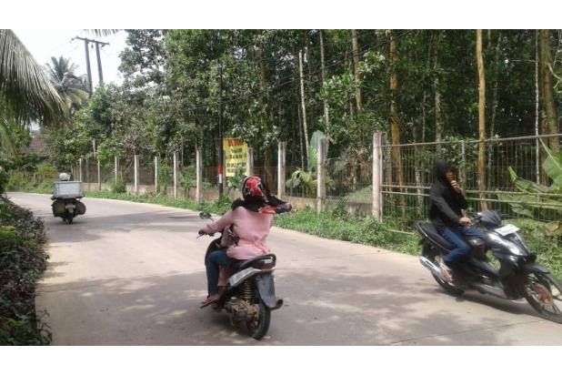 tanah strategis untuk usaha jalan raya Jasinga-Tenjo. 17341409