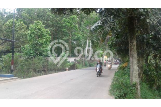 tanah strategis untuk usaha jalan raya Jasinga-Tenjo. 17341428