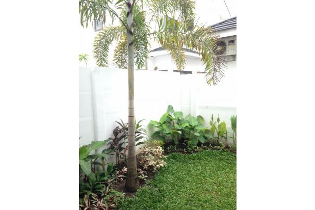New Houses For Rent at Central Business District Sudirman, Pekanbaru Riau 13426677