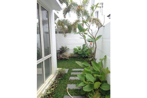 New Houses For Rent at Central Business District Sudirman, Pekanbaru Riau 13426674