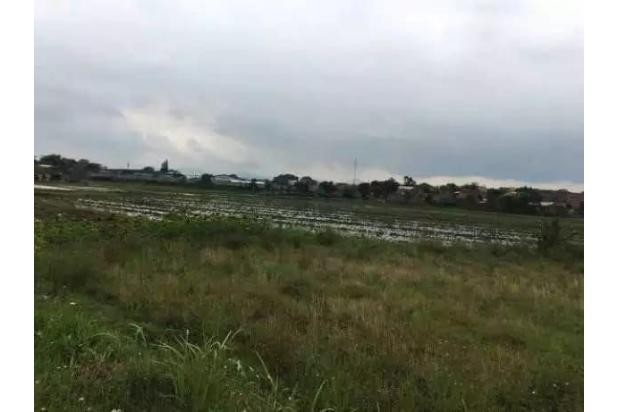Rp15,9mily Tanah Dijual