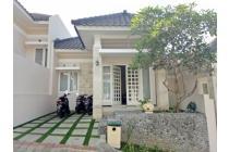 Rumah Baru dan Murah di Dieng hos3904088