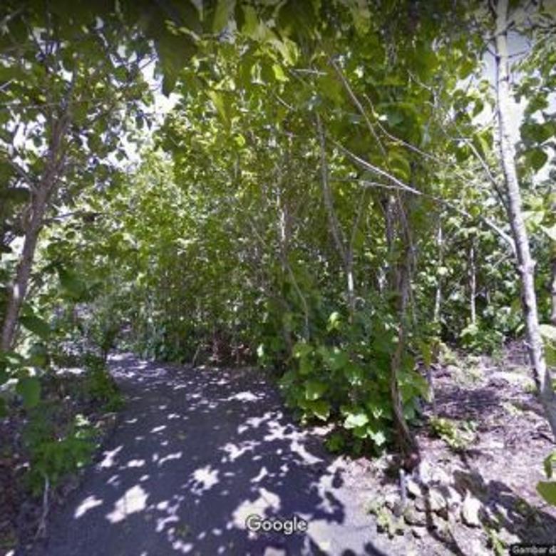 Tanah 3.5 are di Sawangan, Benoa, Nusa Dua, BALI