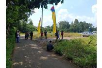 Tanah-Lampung Selatan-3