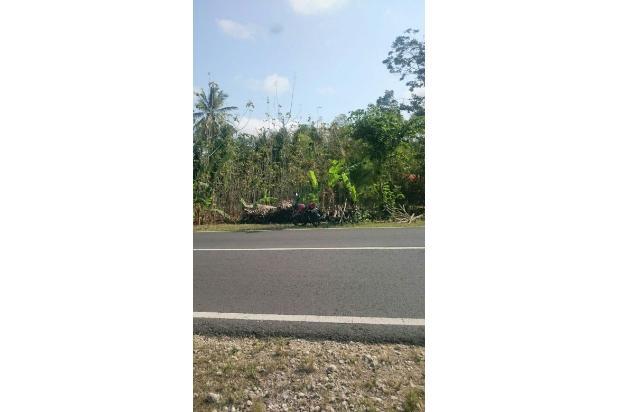 Tanah Prospek Gunungkidul 13698290