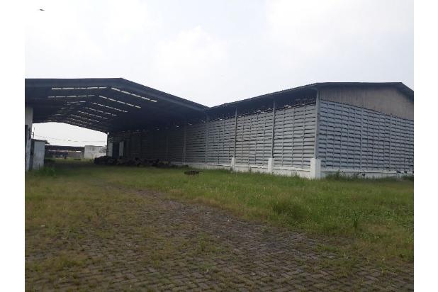 Rp400jt/bln Pabrik Disewa